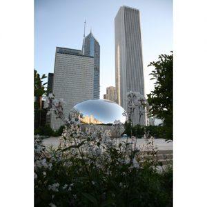 """Chicago Postcard: Cloud Gate, aka """"The Bean"""" at Milenium Park CPC0023"""