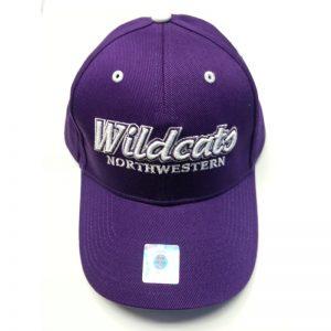 Adjustable Velcroback Northwestern Wildcats Hat