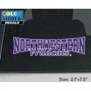 Northwestern Wildcats Outside Application Decal