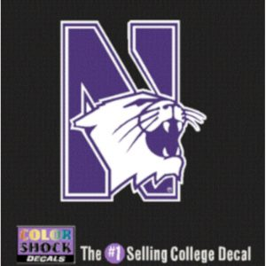 N-cat Design Outside Application Decal