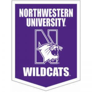 "Northwestern Wildcats Wool Felt Vertical Podium Rafter Banner with Mascot Design (18""X24"")"