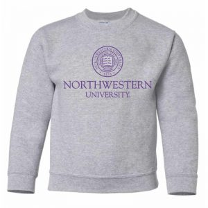 Northwestern University Wildcats Youth Dark Grey Crewneck Sweatshirt with Northwestern University Seal Design