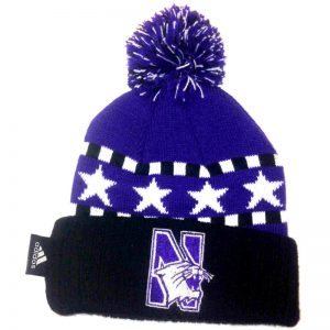 Northwestern Wildcats Toddler Knit Cap with Pom