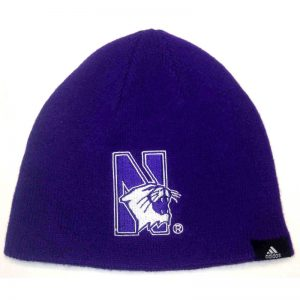 Northwestern Wildcats Youth Knit Cap with Pom
