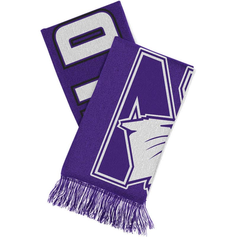 Northwestern Wildcats Adult Reversible Knit Scarf