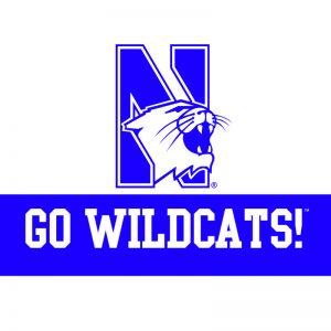 """Northwestern Wildcats """"Go Wildcats"""" Notecard with Envelope"""
