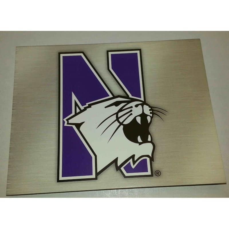 "Northwestern Wildcats ""N-Cat Design"" Notecard with Envelope"