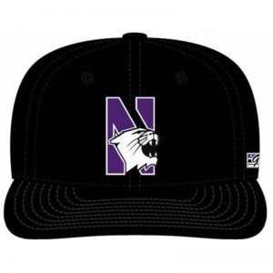 Northwestern Wildcats Black Fitted Hat with Stylized N-Cat Design