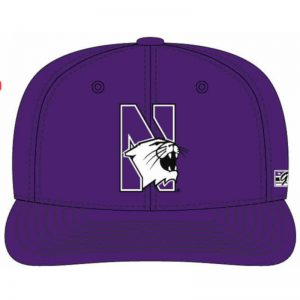Northwestern Wildcats Purple Fitted Hat with Stylized N-Cat Design