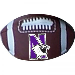 Northwestern Wildcats Beanball Football
