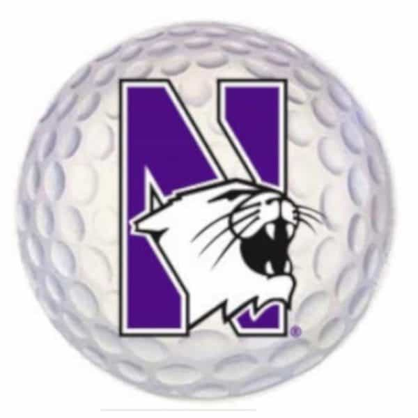 "Northwestern Wildcats Outside Application Decal with N-cat on a Full Color Golf Ball Image 6"" x 6"""