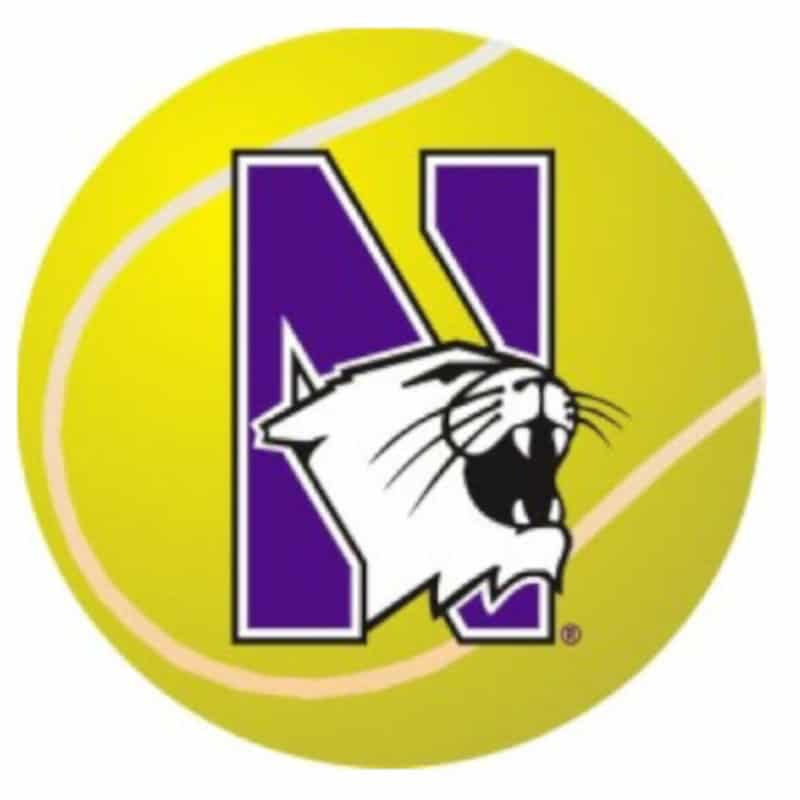 "Northwestern Wildcats Outside Application Decal with N-cat on a Full Color Tennis Ball Image  6"" x 6"""