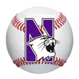 "Northwestern Wildcats Outside Application Decal with N-cat on a Full Color Baseball Ball Image   6"" x 6"""