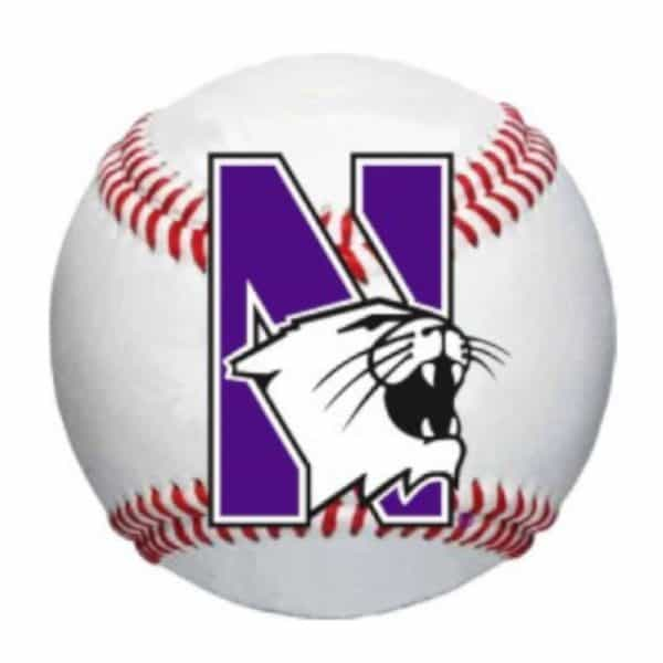 """Northwestern Wildcats Outside Application Decal with N-cat on a Full Color Baseball Ball Image   6"""" x 6"""""""