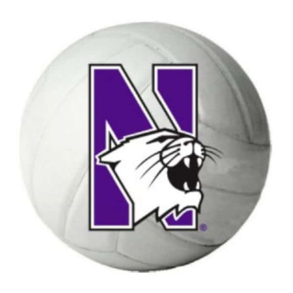 "Northwestern Wildcats Outside Application Decal with N-cat on a Full Color Volleyball Ball Image   6"" x 6"""