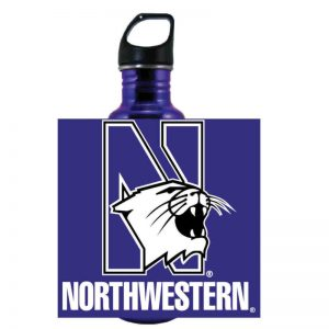 "Northwestern Wildcats 32 oz. Excursion Stainless Steel Bottle with Multi Color ""N-Cat Northwestern"" Design"
