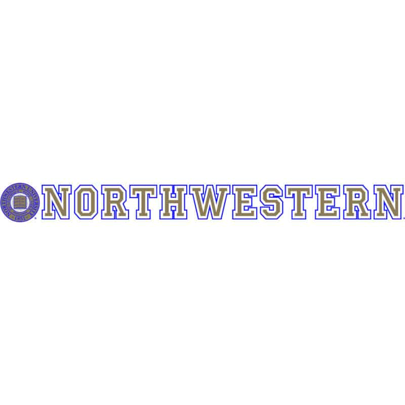 "Northwestern Wildcats Static Cling Inside Application Decal with Seal Design 1.5""X13.5"""