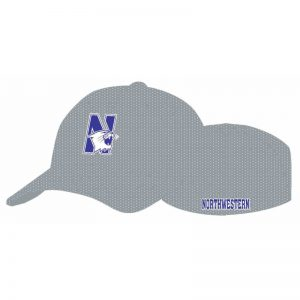 Northwestern Wildcats Grey Flexfit Mesh Hat