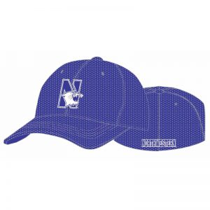 Northwestern Wildcats Purple Flexfit Mesh Hat