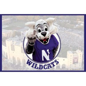 Northwestern Wildcats Postcard Willie the Wildcat in Front of the Aerial View of Ryan Field NU0001