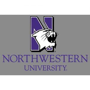 Northwestern Wildcats Postcard NU Mascot Design on Gray Background NU0005