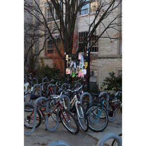 Northwestern Wildcats Postcard Parking Zone on Northwestern Campus NU0021