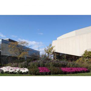 Northwestern Wildcats Postcard Block Museum of Art & Pick-Staiger Concert Hall NU0026
