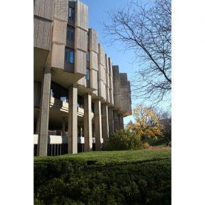 Northwestern Wildcats Postcard University Library NU0033