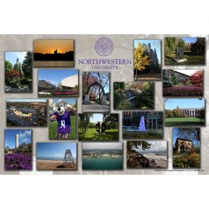 Northwestern Wildcats Postcard Montage with Grey Upper Seal Northwestern University NU0058
