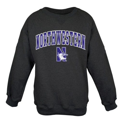 Campus,Gear,chicago,sports,Northwestern,Wildcats,NW,Willie,university,NU,Youth-Crewneck-Sweatshirt--with-Tackle-Twill-Sewn-on-Lettering,Sweatshirts,Crewneck