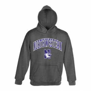Northwestern University Wildcats Youth Charcoal Hooded Sweatshirt With Sewn Arched Northwestern Over N-Cat Design