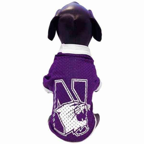 Northwestern Widcats Athletic Dog Jersey