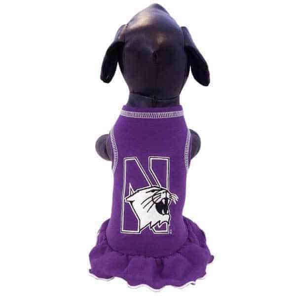 Northwestern Widcats Cheerleader Dog Dress