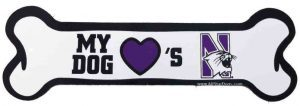 Northwestern University Wildcats Bone Magnet