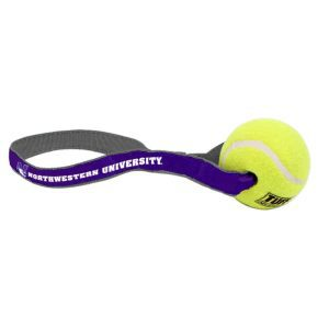 Northwestern Widcats Pet Play Ball