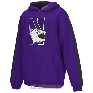 Northwestern Wildcats Colosseum Youth Purple Rally Pullover Hoodie