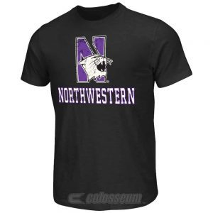 Northwestern Wildcats Colosseum Women's Campus Short Sleeve Tee Shirt