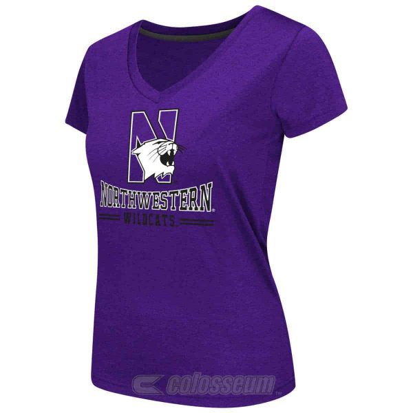 Northwestern Wildcats Colosseum Women's Pride V-Neck  Short Sleeve Tee Shirt