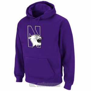 Northwestern Wildcats Colosseum Men's Huddle Fleece Hoodie