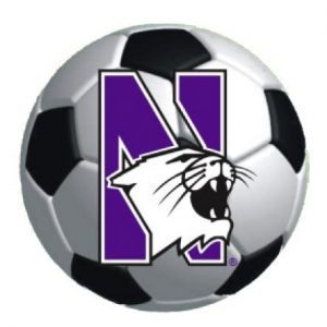 """Northwestern Wildcats Outside Application Decal with N-cat on a Full Color Soccer Ball Image  6"""" x 6"""""""