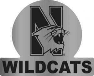 Northwestern Wildcats Auto Badge with N-Cat Wildcats Design