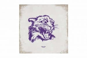 "Northwestern Wildcats Square Vintage Canvas Wall Art with Vintage Wildcat Logo 14""X14"""