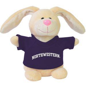 Northwestern Wildcats Bean Bag Buddy Bunny Wearing a Purple Northwestern Tee Shirt