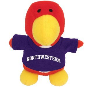 Northwestern Wildcats Bean Bag Buddy Cardinal Wearing a Purple Northwestern Tee Shirt