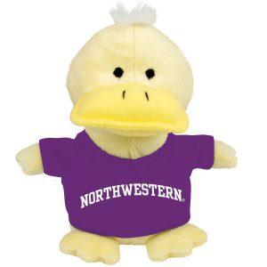 Northwestern University Wildcats Bean Bag Buddy Duck Wearing a Purple Northwestern Tee Shirt