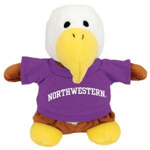 Northwestern Wildcats Bean Bag Buddy Eagle Wearing a Purple Northwestern Tee Shirt