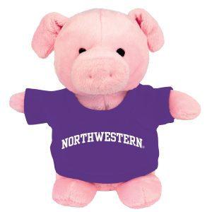 Northwestern Wildcats Bean Bag Buddy Pig Wearing a Purple Northwestern Tee Shirt