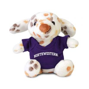 "Northwestern Wildcats Chandler Jr. Wearing Purple ""Northwestern"" Tee Shirt"