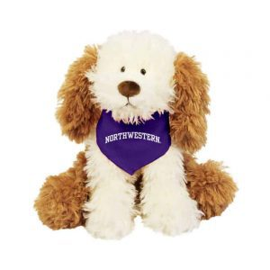 "Northwestern Wildcats Crackers Wearing Purple ""Northwestern"" Bandana"