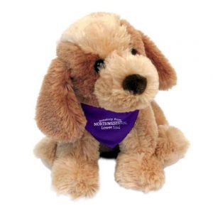 "Northwestern Wildcats Bo Wearing Purple ""Somebody From Northwestern Loves Me"" Bandana"